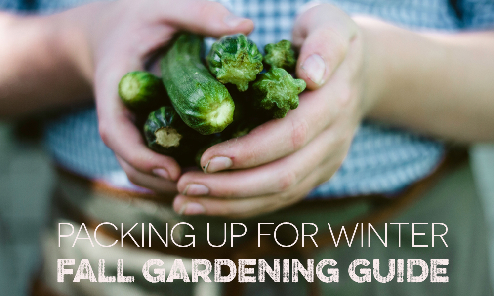 Put a wrap on it.  Fall Gardening Guide